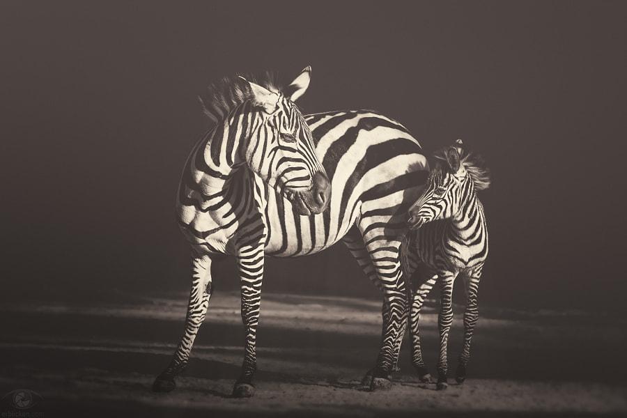 African souls: XVI by Manuela Kulpa on 500px.com