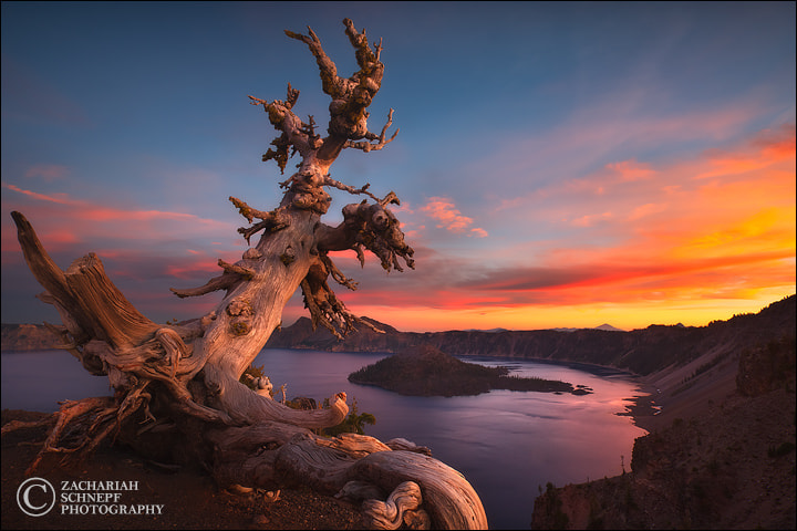 Photograph The Sentinel by Zack Schnepf on 500px