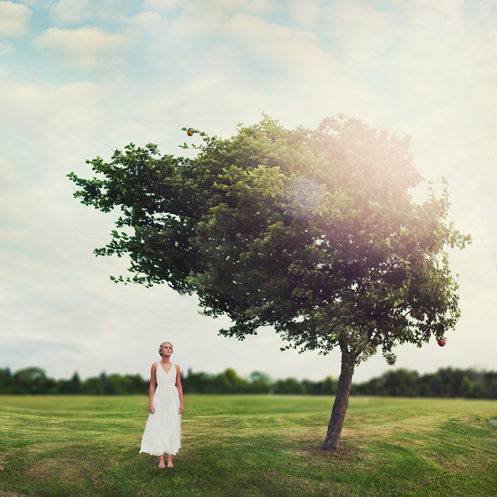Photograph Melancholia  by Vanessa Paxton on 500px