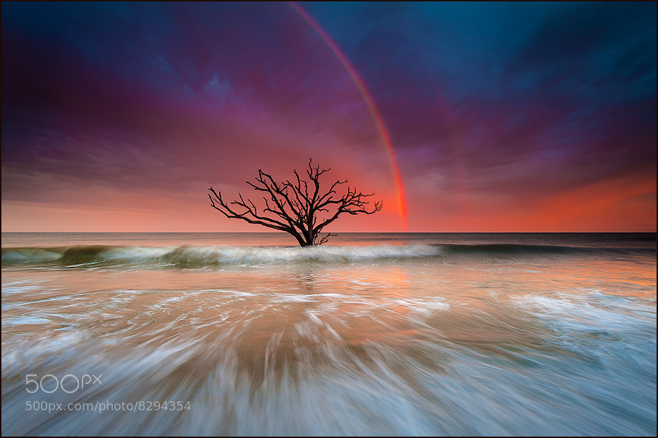 Photograph Rainbow Over Edisto Island by Igor Laptev on 500px