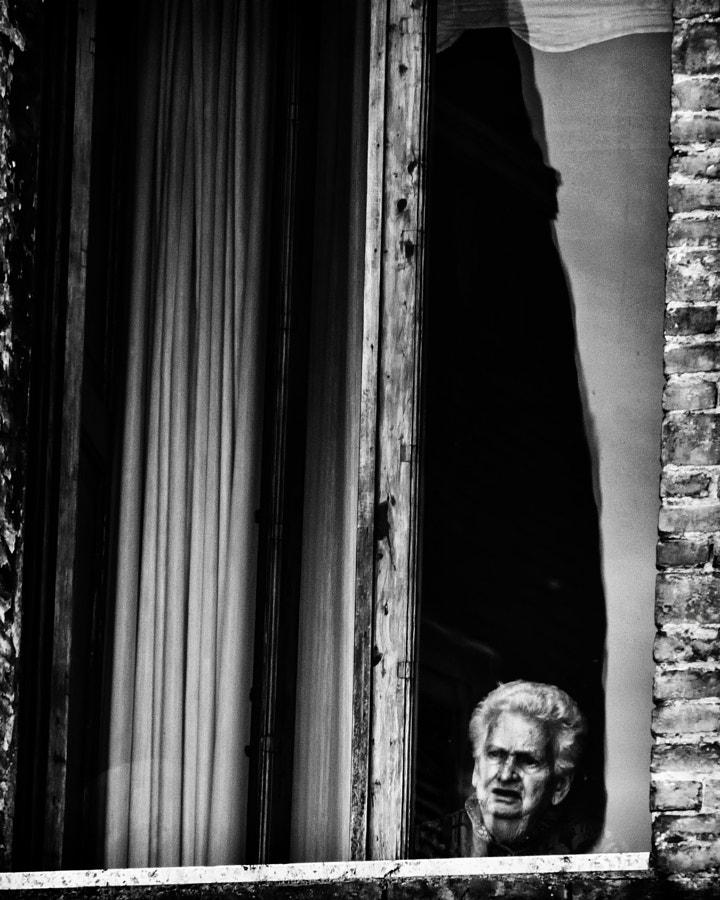 Florentine Window