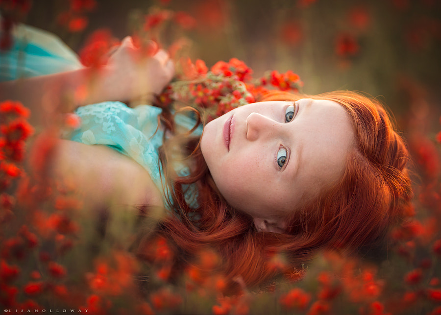 Photograph Field of Dreams by Lisa Holloway on 500px