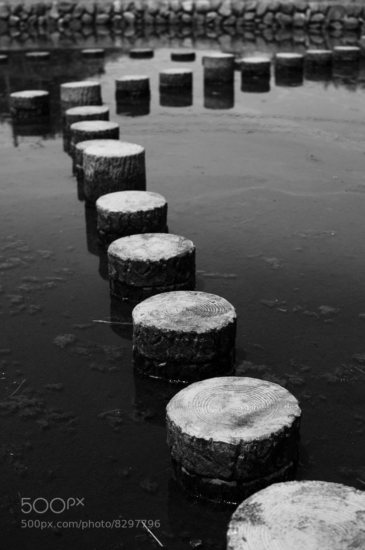 Photograph Untitled by takahiro yoshizaki on 500px