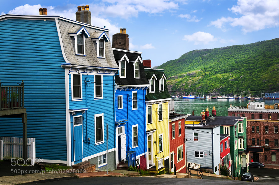 Photograph Colorful houses in St. John's by Elena Elisseeva on 500px