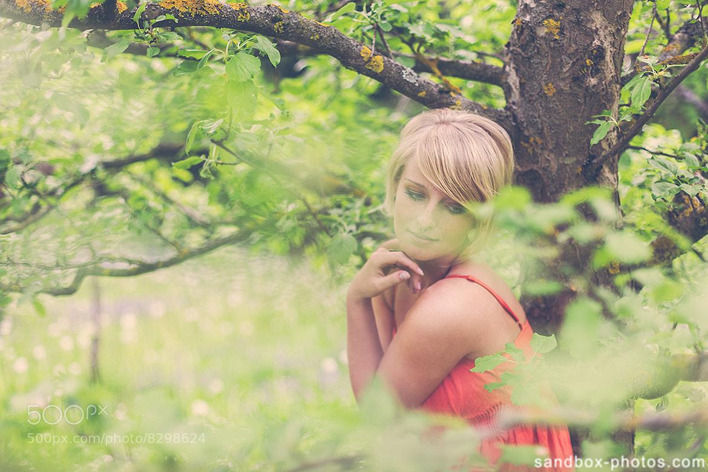 Photograph a summer garden romance by Christopher Wesser on 500px