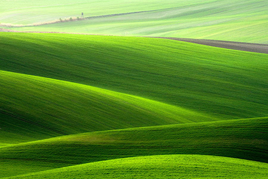 Photograph On fields by Marcin Sobas on 500px