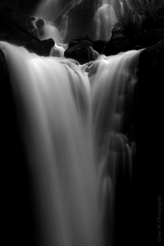 Photograph The beauty of black-and-white by Gary Meyers on 500px