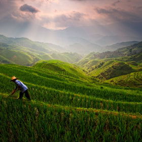 Longji Rice Terrace by Helminadia Ranford (Helminadia_Ranford)) on 500px.com