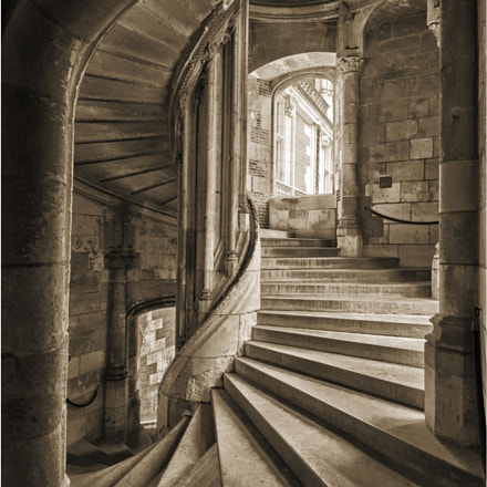 Blois castle spiral stair 2012-08-06 173915