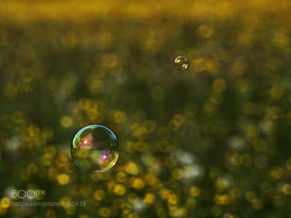 Photograph a dream by SuSi MarX on 500px