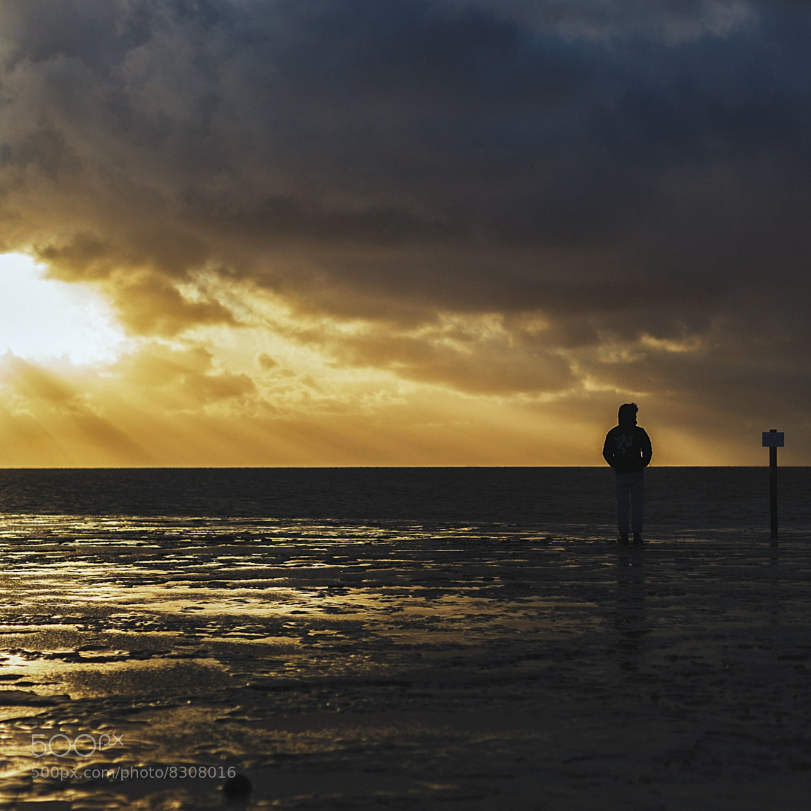 Photograph lonely sunset by Nikita Saltykov on 500px