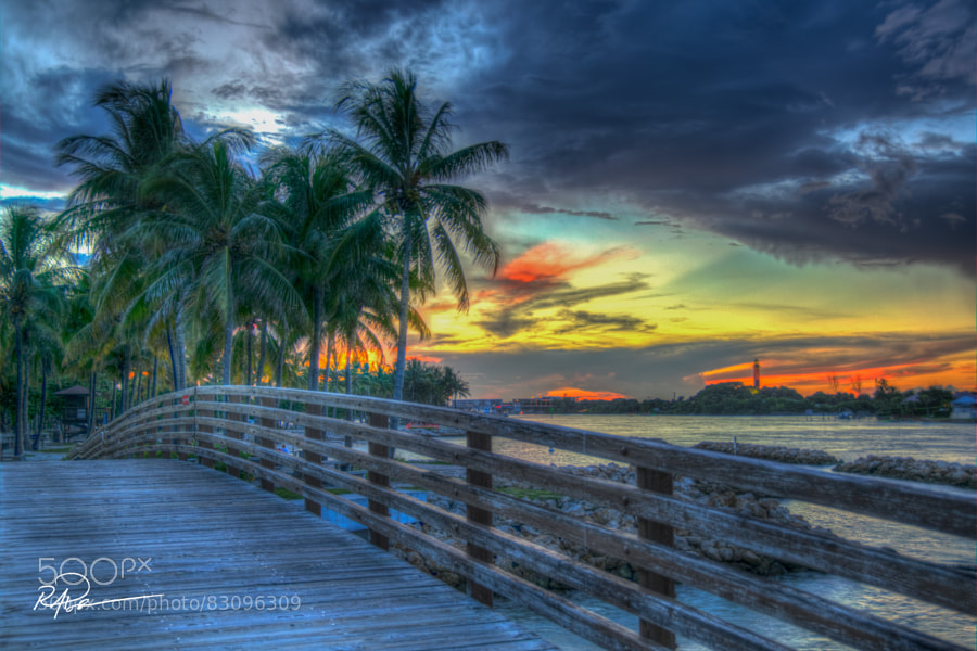 Photograph Salt Life by Mike Poole on 500px