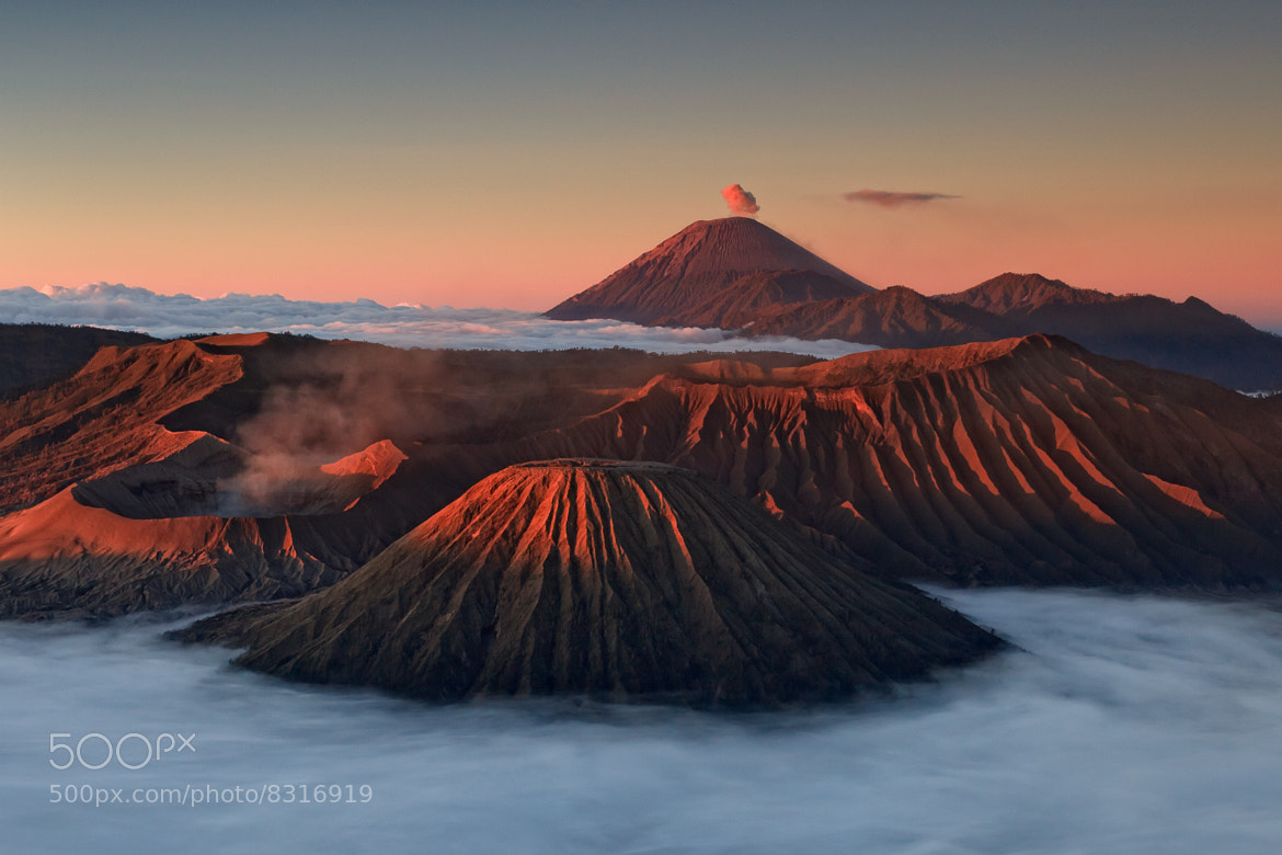 Photograph Untitled by Helminadia Ranford on 500px
