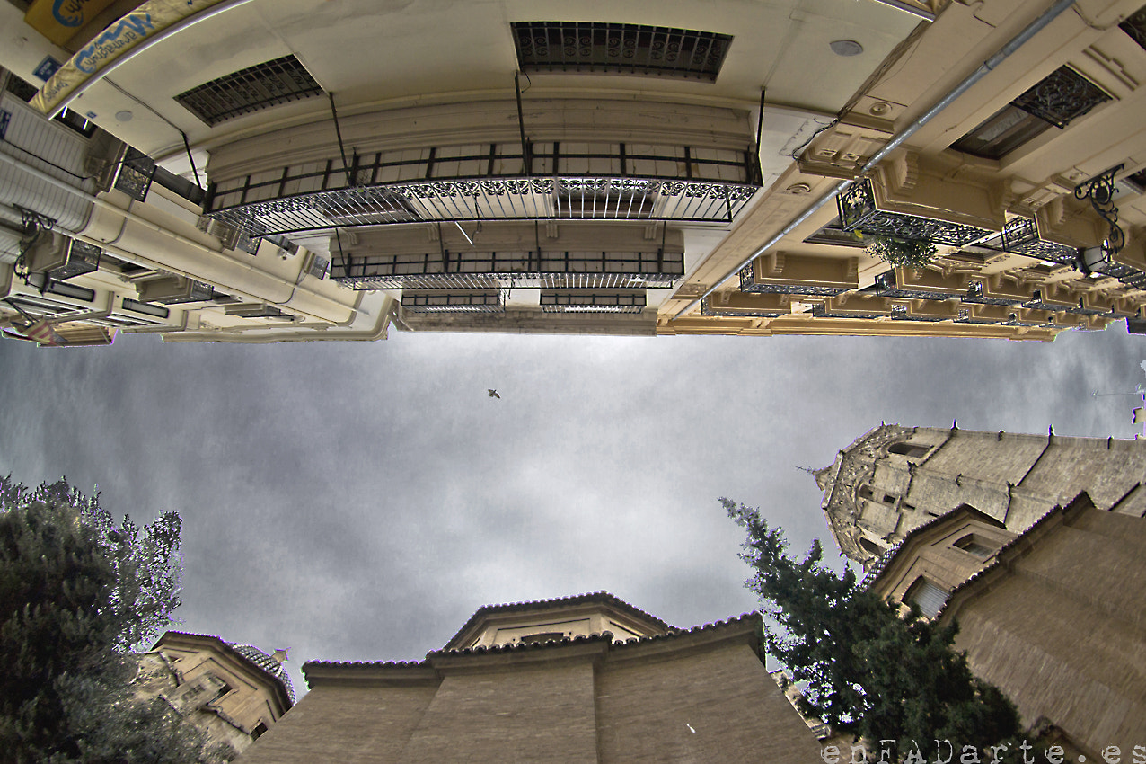 Photograph LOOKING UP - ABOVE THE OLD TOWN by Francisco Alcantud on 500px