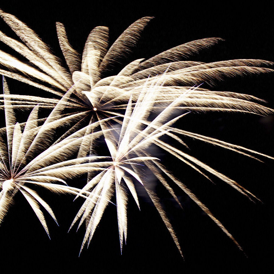 Photograph Firework by HankknaH on 500px