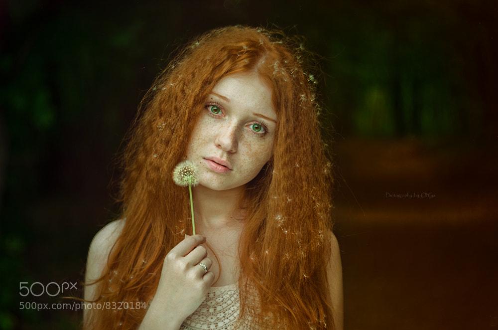 Photograph *the girl with dandelion hair* by Olga Gabsattarova on 500px
