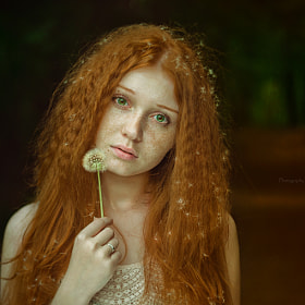 *the girl with dandelion hair* by Olga Gabsattarova (Ol_Ga)) on 500px.com