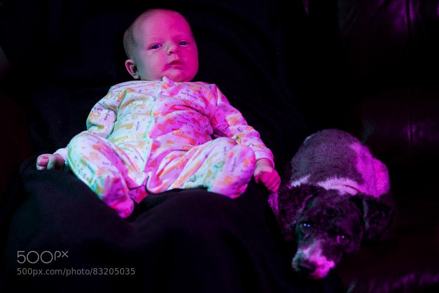 Photograph Kiwi and Fiona by Jay Scott on 500px