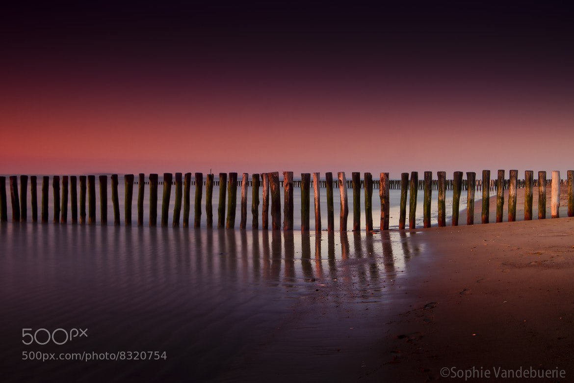 Photograph The happy pile-moodswing by Sophie Vandebuerie on 500px
