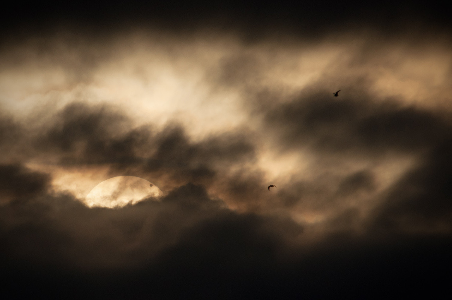 Photograph Transit of Venus 2012 by Andrew Steele on 500px