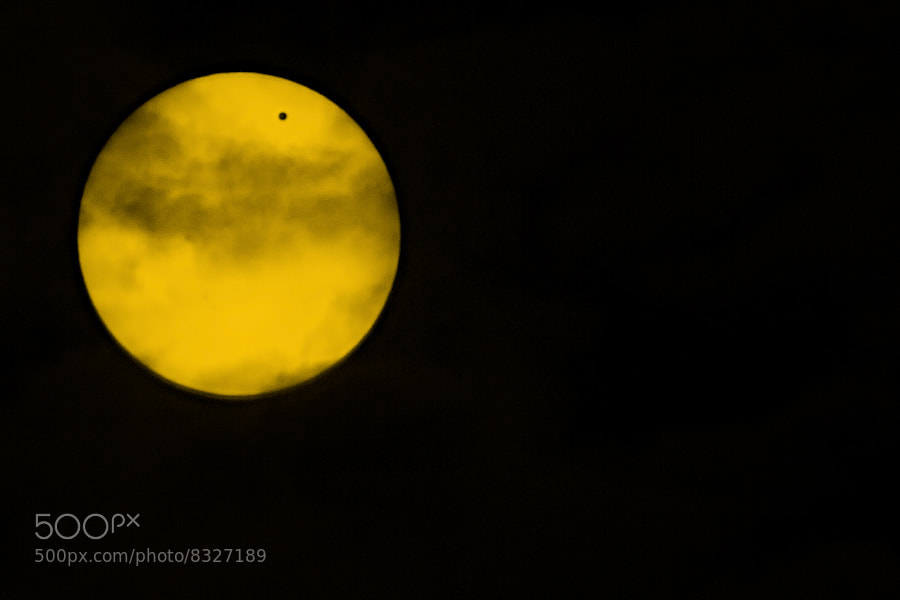 Venus on Yellow Plate by Evgeny Tchebotarev (tchebotarev) on 500px.com