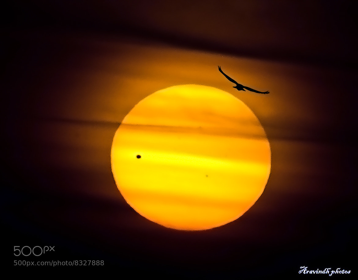 Photograph venus by Aravindh Ganesh on 500px