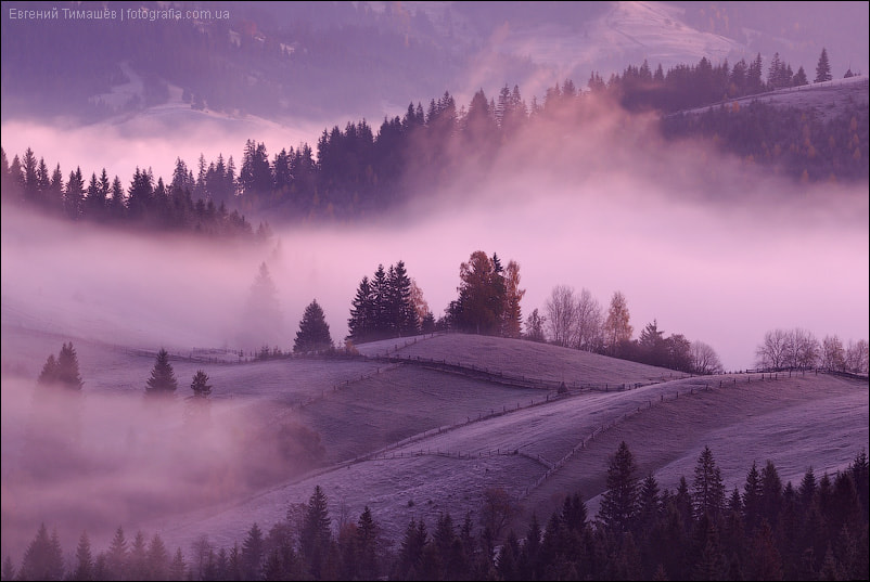 Photograph Misty Morning in Carpathians by Yevgen Timashov on 500px