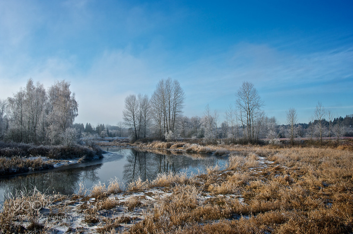 Photograph Morning Frost by Jeff T on 500px