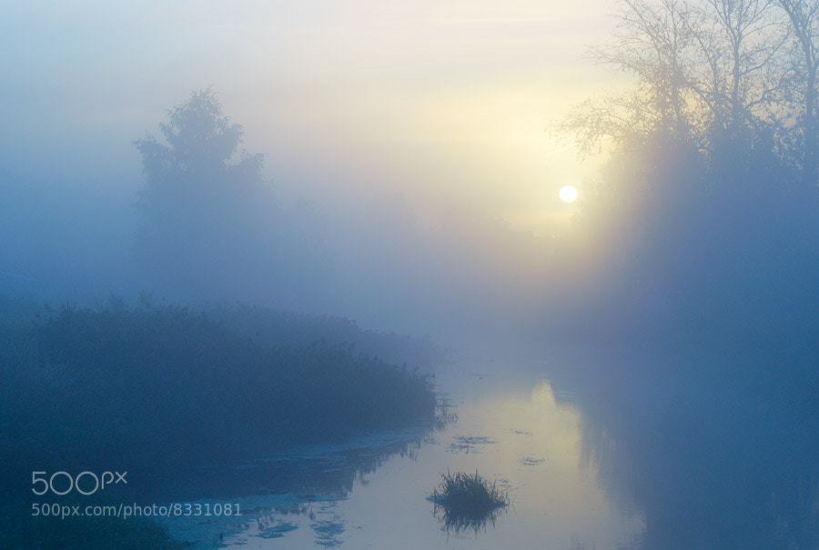 Photograph Fog by Art Verhovod on 500px