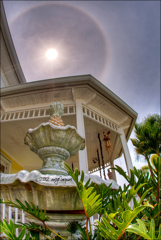 Photograph Halo by Amy Marques  on 500px