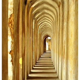 Corridors and shadows by Rohan Rao (rohn123)) on 500px.com