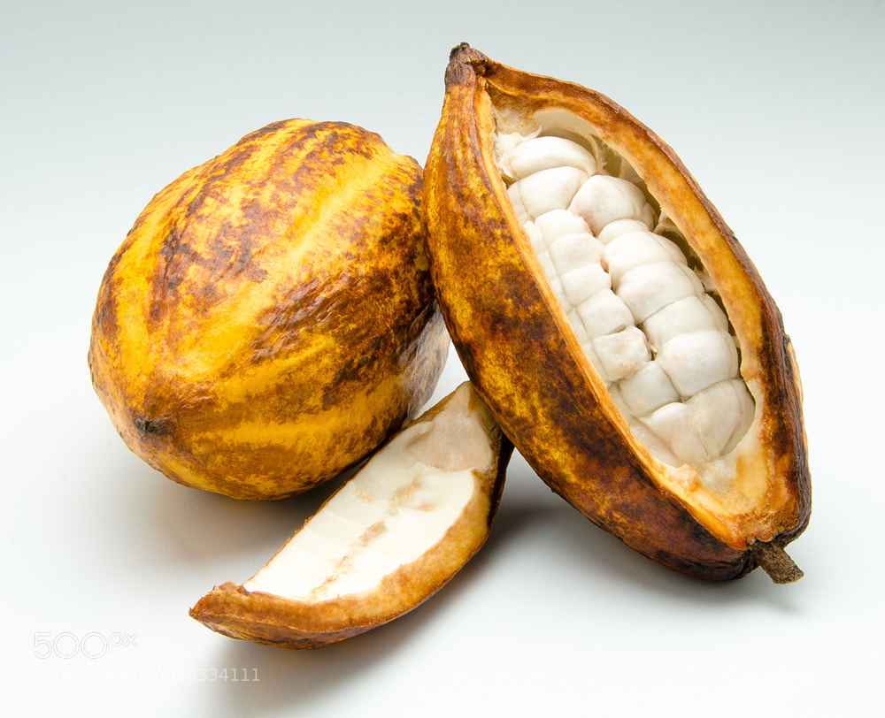 Photograph Cacao by Héctor Barrera Carrera on 500px
