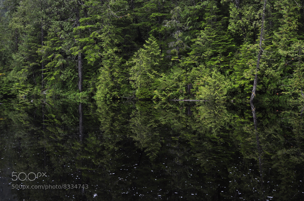 Photograph canadian reflection by helmut flatscher on 500px