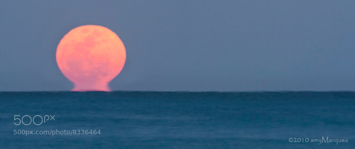 Photograph Moon Rise by Amy Marques  on 500px