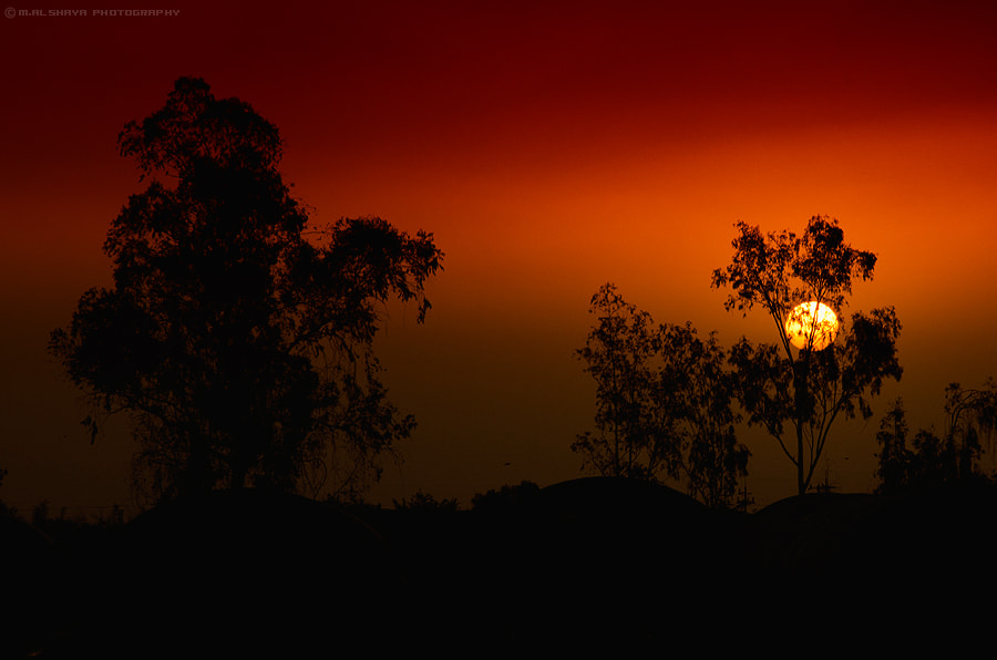 Photograph sunset by Mohammed Al Shaya on 500px