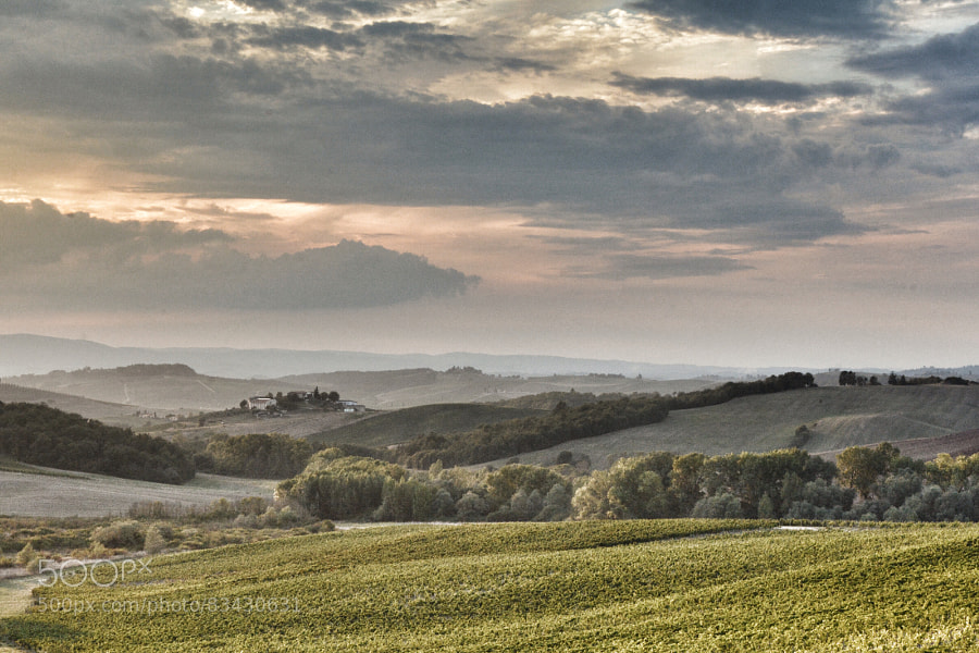 Early evening in Tuscany