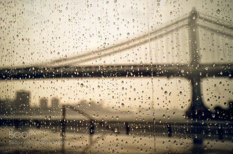 I was at Dumbo taking some pictures of the two bridges when it startet to rain. The only shelter I found was Jane's Carousel where I took this picture