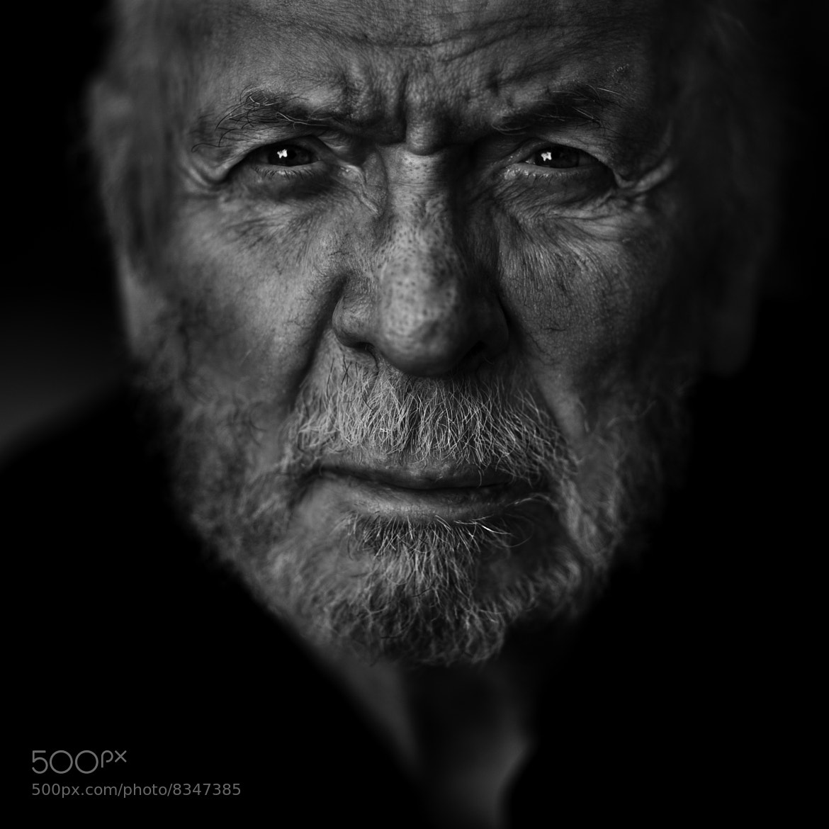 Photograph Herbert Kretzmer by Betina La Plante on 500px