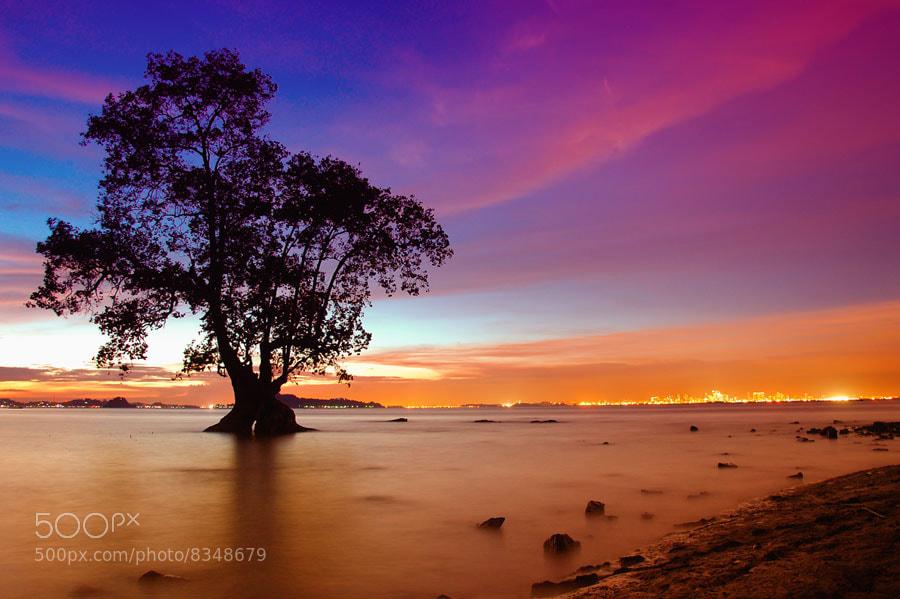 Photograph silent sunset by Assoka Andrya on 500px
