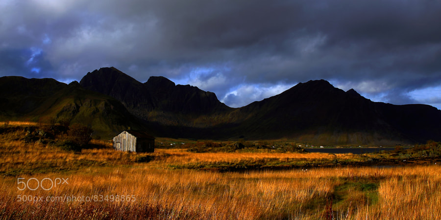 Photograph Autumn's low sun. by Tommy Andreassen on 500px
