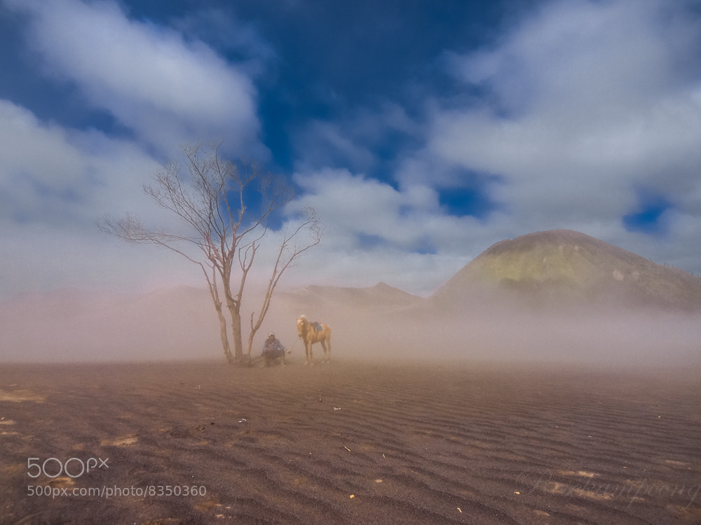 Photograph Stand Still by Rose Kampoong on 500px
