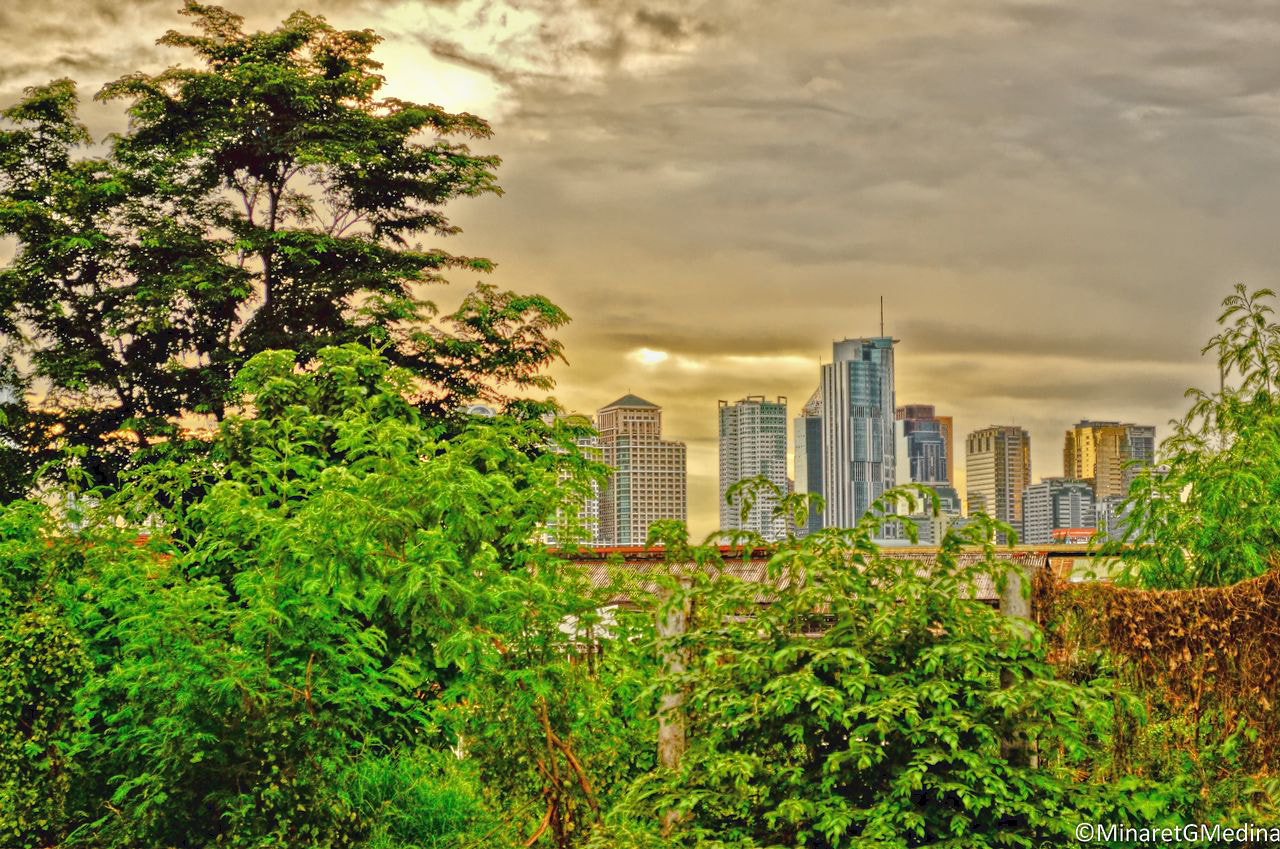 Photograph The backyard meets the city buildings. by Minaret Medina on 500px