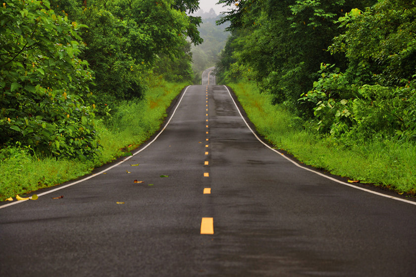 Photograph Road to the green by Prawit Pimmasarn on 500px