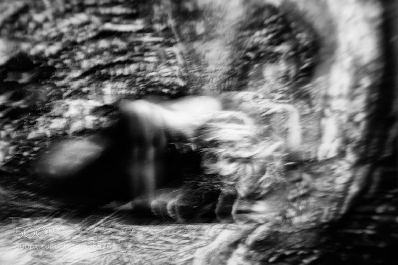 Photograph ...... by Tatyana Kirsanova on 500px