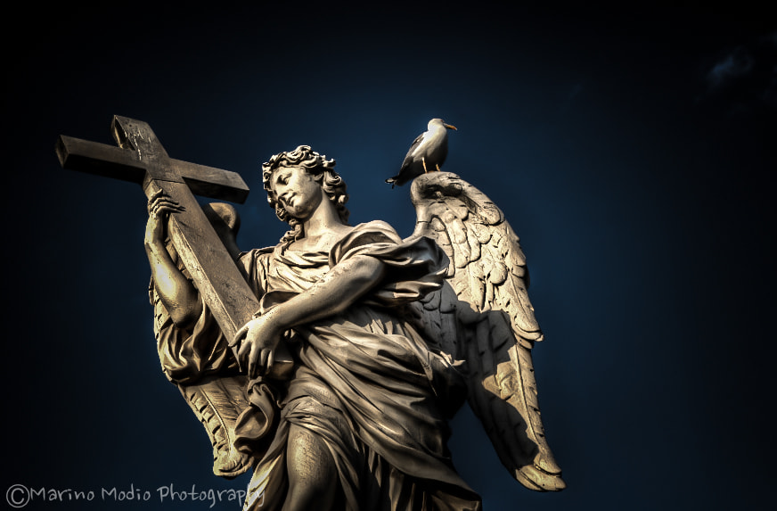 Photograph Angel by Marino Modio on 500px