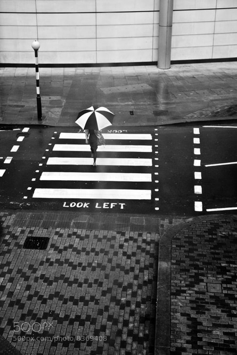 Photograph Look Left by Linda Wisdom on 500px