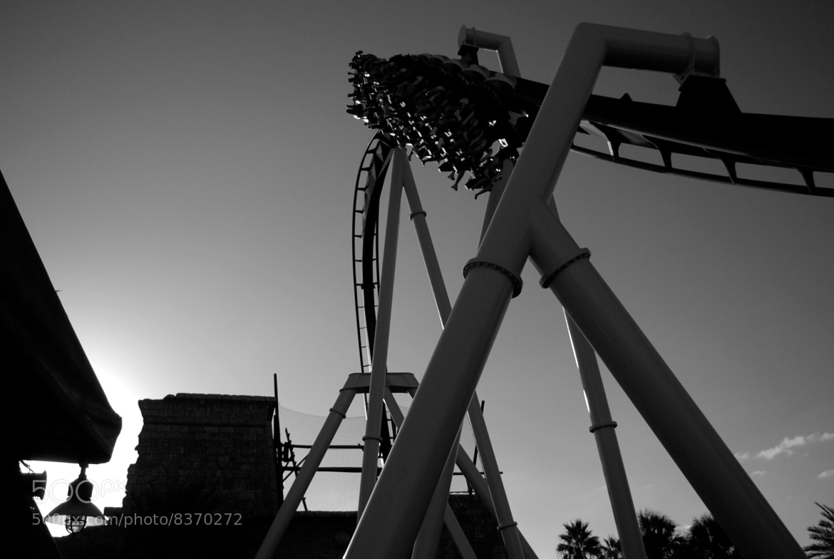 Photograph Montu-Busch Gardens B&W by Francisco Marty on 500px