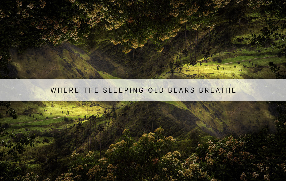 Photograph Where The Sleeping Old Bears Breathe by Tim Snell on 500px