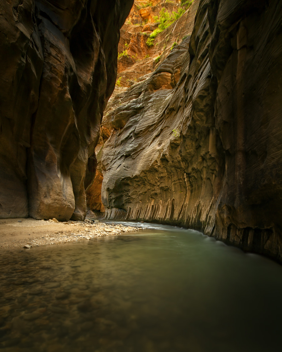 Photograph Narrowing by Danilo Faria on 500px