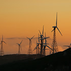Постер, плакат: Wind farm near the Street of Gibraltar at sunset